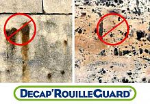 Decap Rouille Guard